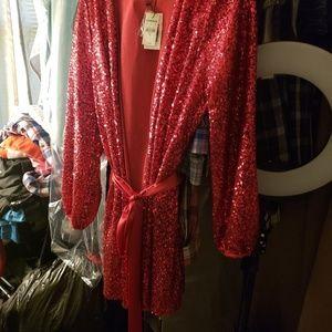 Express Deep Pink Sequined dress